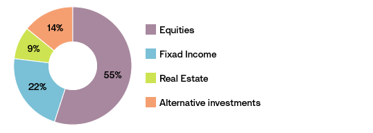 Chart showing Asset distribution